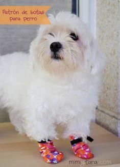 botas perro