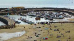 Lyme Regis Harbour and Cobb. Swing Tilt Experiment. (film / video).