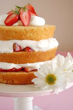 Strawberry Shortcake...MY FAVORITE! Favorite Favorite! No other dessert comes before Strawberry shortcake!