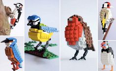 Popular birds made out of LEGO—Inspiration for a fun project for kids.