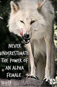 Alpha female.. #neverunderestimate #alpha #alphafemale #bossbabe #strongwomen #validate #empower #uplift #iamwonderwoman