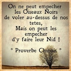 PROVERBE chinois Positive Mind, Positive Words, Positive Attitude, Message Quotes, Motivational Messages, Inspirational Quotes, French Words, French Quotes, Human Nature