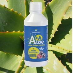Il nostro succo Aloe + Aronia ( A+A ) è estremamente ricco in #antociani, potenti antiossidanti, oltre ad essere una ricca fonte di… Aloe, Soap, Personal Care, Bottle, Self Care, Personal Hygiene, Flask, Bar Soap, Soaps