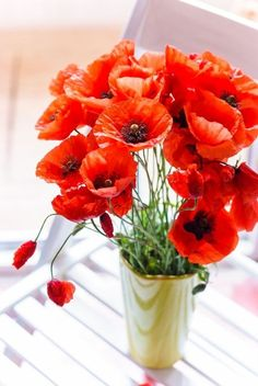 Love the bright red colour of poppies Poppy Bouquet, Orange Poppy, Red Poppies, My Flower, Bunt, Mother Nature, Floral Arrangements, Beautiful Flowers, Cactus