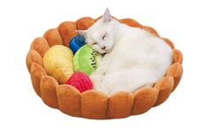 Turn Your Cat Into A Napping Dessert With The Kitty Fruit Tart Bed