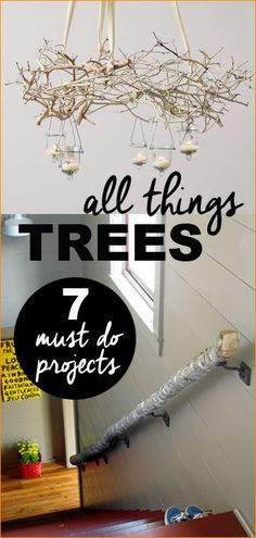 7 Thing to try with Trees.  Great projects to bring the outdoors inside your home.