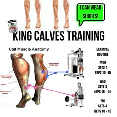 Weight Training Workouts, Gym Workout Tips, Workout Videos, Calf Muscle Anatomy, Calf Training, Calf Exercises, Calf Workouts, Crossfit, Fit Girl