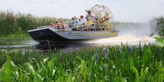 The Gator's Nest Air Boat Tours - 5 miles from Sanford, FL Airport - 10% off a 1 hour ride with Allegiant Air ticket stub