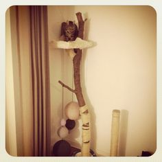 I love the natural materials used in this cat tree, and the scratching post integration, and how high the cat can perch! I want to MAKE THIS!