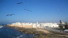 """Un séjour d'excursion à Essaouira Maroc """" www.diamanevoyages.com """" ."""