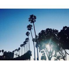 記念すべき201枚目🥀 #insta #instagram #instagood #instalike #instagramer #instapic #instadaily #instagramers #instatag #pink #pic #lajolla #usa #america #california #sandiego #love #like4like #fun #happy #swag #tgif #lajollalocals #sandiegoconnection #sdlocals - posted by haruka  https://www.instagram.com/saicorod. See more post on La Jolla at http://LaJollaLocals.com