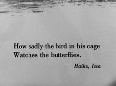 "Issa / Haiku 1823  .籠の鳥蝶をうらやむ目つき哉 ~ kago no tori chô wo urayamu metsuki kana ~ ""caged bird-- watching the butterfly with envy"" I like this translation found in a wonderful little children's book: ""How sadly the bird in his cage/ Watches the butterflies""; Don't Tell the Scarecrow and Other Japanese Poems (New York: Scholastic Books, 1969), unpaginated. However, urayamu connotes envy, not sadness."