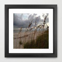 Rain Clouds & Sea Oats Framed Art Print by Rosie Brown -