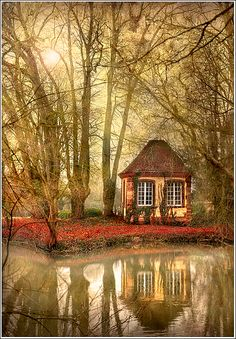 Once upon a time, at the edge of a quiet wood, a tiny cottage dreamed of the underwater world it gazed upon every day.....