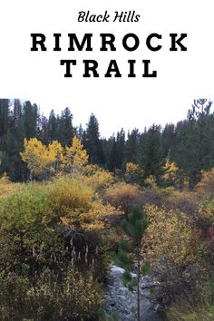 Looking for a great place to view fall colors in the Black Hills? Check out Rimrock Trail, that traverses quieter parts of Spearfish Canyon! Travel Guides, Travel Tips, Great Places, Places To Go, Spearfish Canyon, Vacations In The Us, Best Hikes, United States Travel, Usa Travel