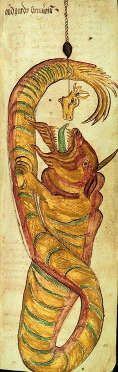 Jormunganr, the Midgard Serpent, a 17th century Icelandic manuscript by  Árni Magnússon. This scene depicts Thor's attempt to capture the serpent with a fishing line baited with an ox head.