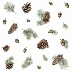 Use the RoomMates Acorn and Pinecone Peel And Stick Wall Decals to add a touch of nature to your lodge space or as rustic Christmas decor. Christmas Phone Wallpaper, Apple Watch Wallpaper, Holiday Wallpaper, Winter Wallpaper, Christmas Phone Backgrounds, Iphone Background Wallpaper, Aesthetic Iphone Wallpaper, Christmas Backrounds, Simple Christmas