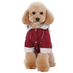 01434453f Outtop Pet Costume Small Dogs dog Sweatshirt Hoodie Coat Shirt Clothes  Apparel Accessory for Dog Dachshund