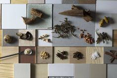 A display of ingredients used at Kungyokudo, a 422-year-old incense producer and one of Nakagawa Masashichi Shoten's newest collaborations.