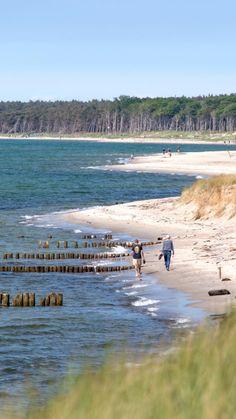 Fischland Darß Zingst: Ostseeurlaub