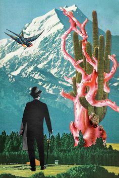 Farscapes - Eugenia's Collages