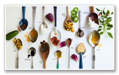 Food Feature: Each spoon=an item from a popular place to eat and a quote/headshot beside each item