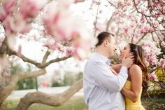 dc wedding photographer, dc cherry blossom engagement