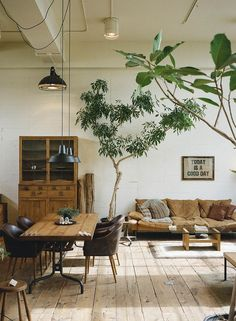 Modern loft living room with a white, beige, tan, and brown color scheme featuring large trees in the room as decor - Home Decor & Decorating Ideas