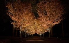 Westchester County | HK USA Lighting Group