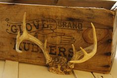 Vintage Deer Antlers Handsome Six Point Deer by VandyleeVintage