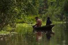Caño Del Rio Amazonas, Colombia