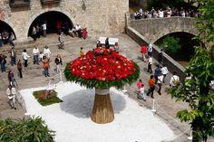 El Blog de La Tabla: Girona Temps de Flors 2014 (y todo el año). Flower time 2014