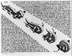 """MC Escher's """"Wentelteefje"""" or """"Rolpens""""."""