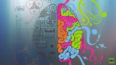 ¿Por qué los genios suelen ser melancólicos? ¿Es justo el estereotipo que relaciona al genio con la locura y la inestabilidad mental? ¿El genio nace o se hace? ¿Qué rasgos tienen en común los genios? Estas son algunas de las preguntas a las que ha dedicado su carrera científica la destacada neuróloga y filóloga estadounidense Nancy Andreasen.