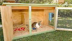 Want to keep rabbit for meats or pet? You need to build a rabbit hutch. Here& a collection of 50 free DIY rabbit hutch plans and ideas. Rabbit Hutch Indoor, Rabbit Hutch Plans, Rabbit Hutches, Rabbit Pen, Pet Rabbit, Ruby Rabbit, Rabbit Life, Rabbit Garden, Bunny Cages