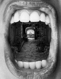 'Inner Beauty' Fotografias que van mas alla de los limites de la realidad  Thomas Barbéy, autor de estas imágenes, asegura inspirarse en artistas como René Magritte, M.C. Escher o Roger Dean