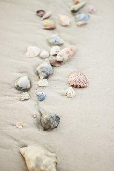 . I Love The Beach, Beautiful Beach, Beautiful Life, Ocean Life, Summer Beach, Summer Breeze, Ocean Beach, Summer Days, Shell Beach
