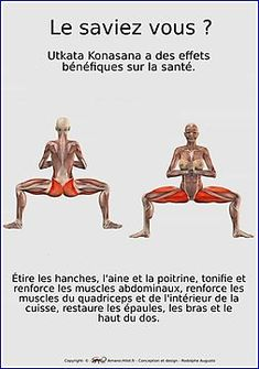 «Plaques musculo-squelettiques des positions de yoga - N ° 32 Iyengar Yoga, Ashtanga Yoga, Yoga Positionen, Yoga Fitness, Yoga Muscles, Mudras, Qi Gong, Flexibility Workout, Yoga For Weight Loss