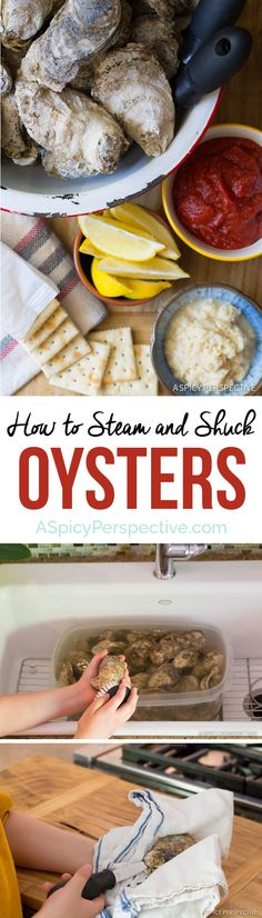 To Shuck Oysters How to Shuck Oysters (And Steam Oysters, and throw an Oyster Shucking Party, and.)How to Shuck Oysters (And Steam Oysters, and throw an Oyster Shucking Party, and. Raw Oysters, Smoked Oysters, Grilled Oysters, Seafood Recipes, Cooking Recipes, Healthy Recipes, Shellfish Recipes, Recipes, Seafood