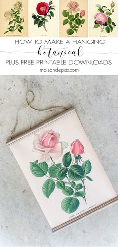 How to make a hanging printable botanical: This DIY hanging botanical creates a beautiful piece of wall art in no time at all! Plus choose from four free botanical prints to download.