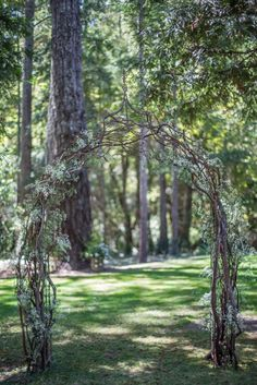 Parisi Wedding — our wedding arch with brambles of manzanita branches and baby's breath