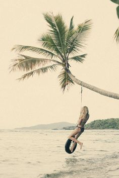 a tire swing. a palm tree. the ocean.