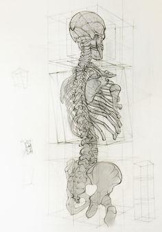 Jesús Guédez (Caracas, Venezuela) - Analytic Drawing, 2013     Drawings: Pencils on Paper