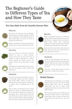 The Beginner's Guide to Different Types of Tea and How They Taste - Delicious Tea Recipes - Chai, Different Types Of Tea, Tea Types, Oolong Tea, Best Tea, Tea Blends, Tea Recipes, High Tea, Drinking Tea