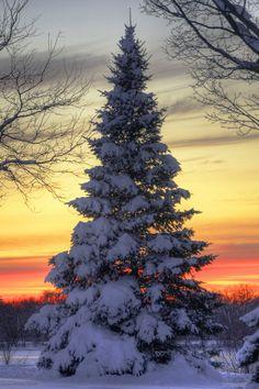 Amazing winter sunset...