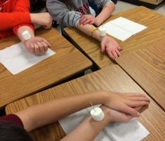 Watching A Beating Heart Growing Grade by Grade: Science: Watching A Beating Heart Science Resources, Science Lessons, Science Education, Science Activities, Life Science, Physical Science, Earth Science, 5th Grade Science Experiments, 6th Grade Science Projects