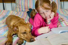 Dyslexia Improvements #Teaching #Improvements #Dyslexia #Children #Videos #Reading