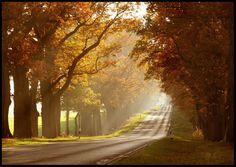 ANNESİNİN PRENSİ Sonbahar'da Güneşin Tadını Çıkarın http://annesininprensi.blogspot.com/2013/10/sonbaharda-gunesin-tadn-ckarn.html#.UmpVqHXtwuQ.twitter