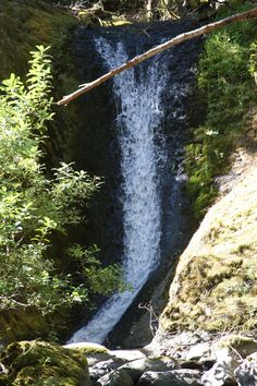 The left side of the unnamed waterfall near 4 1/2 Mile Bridge.   Eagle Creek, Columbia Gorge, OR.  08/2010.