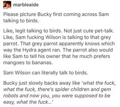 Bucky Barnes Sam Wilson the falcon avengers marvel mcu